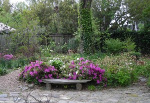 small bench with azaleas (2)