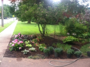 jeanie's landscape bed