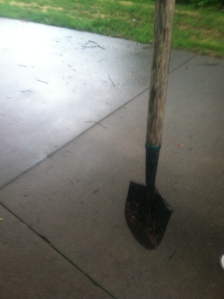 the lady's shovel